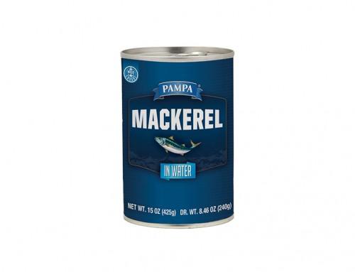Pampa Mackerel in Water